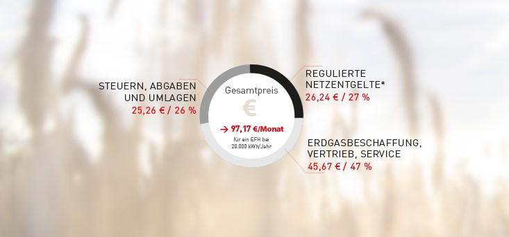 Gas Weitere Informationen Gaspreis